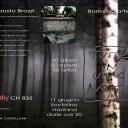 Monica Catto |50 alberi-opere-artisti|